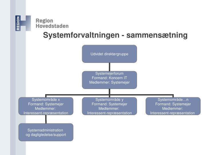 Systemforvaltningen - sammensætning
