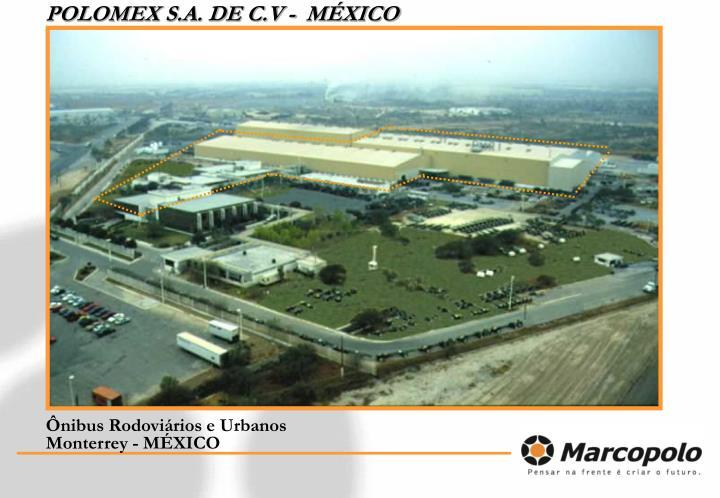 POLOMEX S.A. DE C.V -  MÉXICO