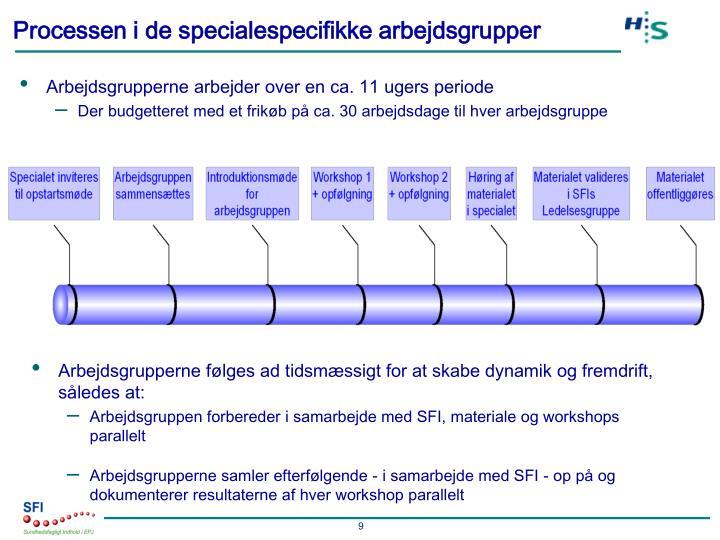 Processen i de specialespecifikke arbejdsgrupper