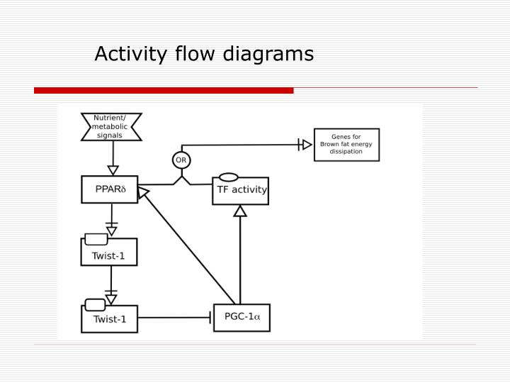 Activity flow diagrams