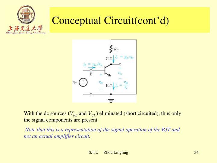 Conceptual Circuit(