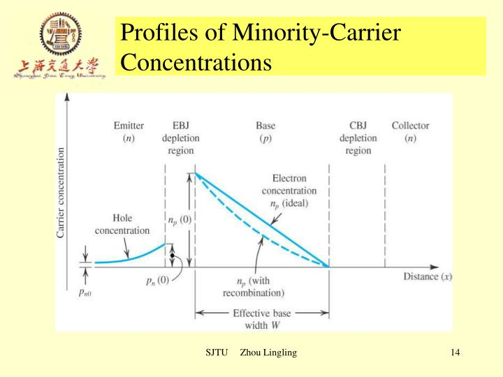 Profiles of Minority-Carrier Concentrations