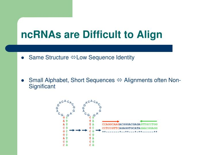 ncRNAs are Difficult to Align