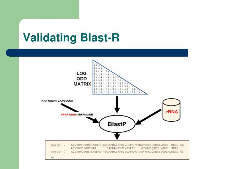Validating Blast-R