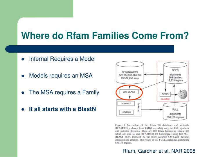 Where do Rfam Families Come From?