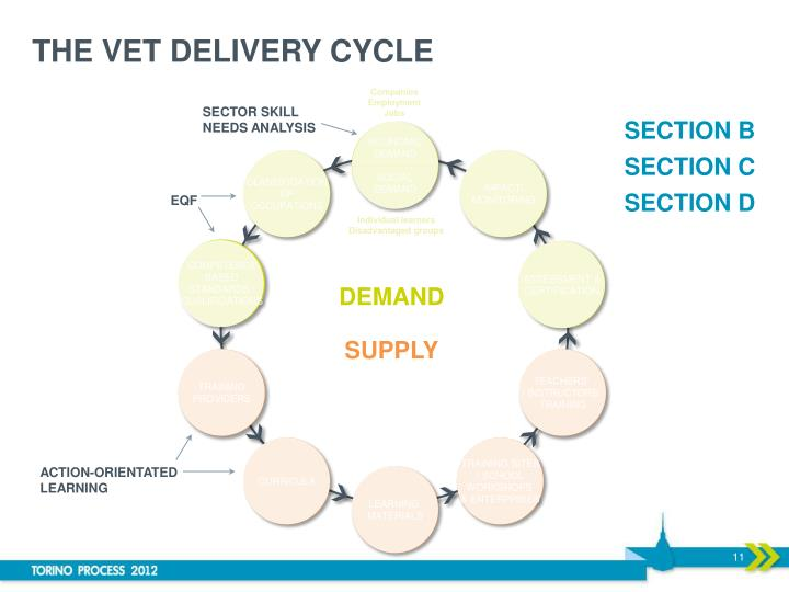 THE VET DELIVERY CYCLE