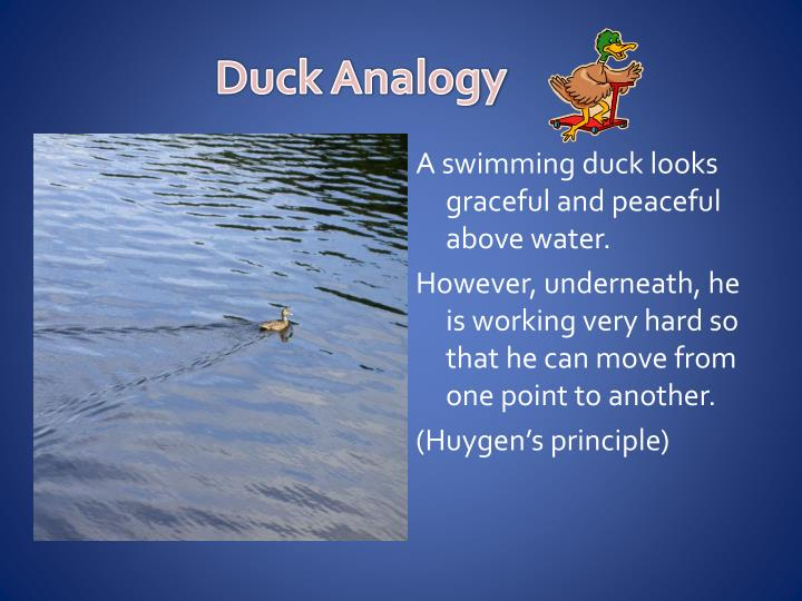 Duck Analogy