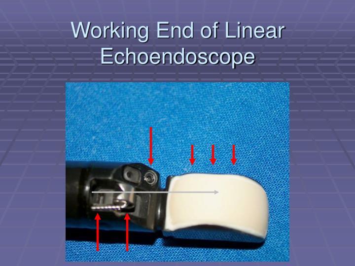 Working End of Linear Echoendoscope