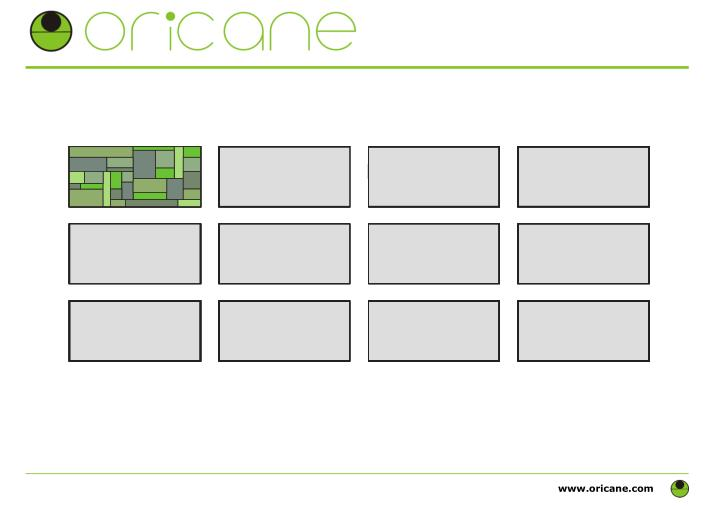 www.oricane.com