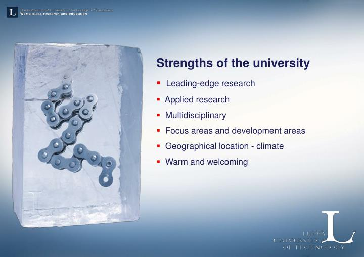 Strengths of the university