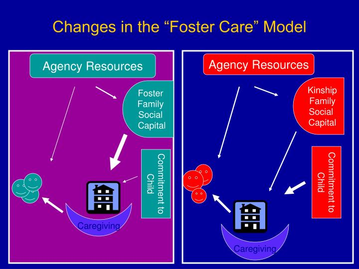 "Changes in the ""Foster Care"" Model"