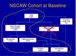 nscaw cohort at baseline