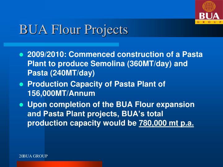 BUA Flour Projects
