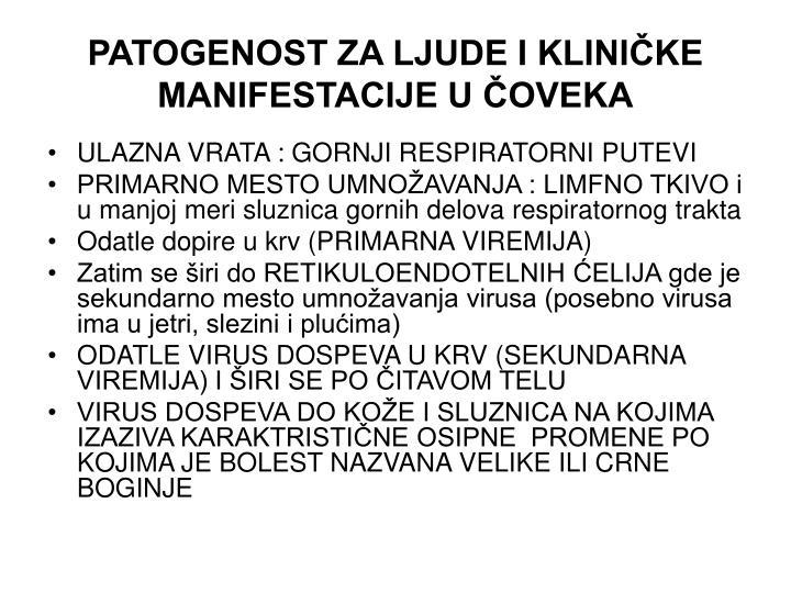 PATOGENOST ZA LJUDE I KLINIČKE MANIFESTACIJE U ČOVEKA