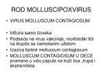 rod molluscipoxvirus
