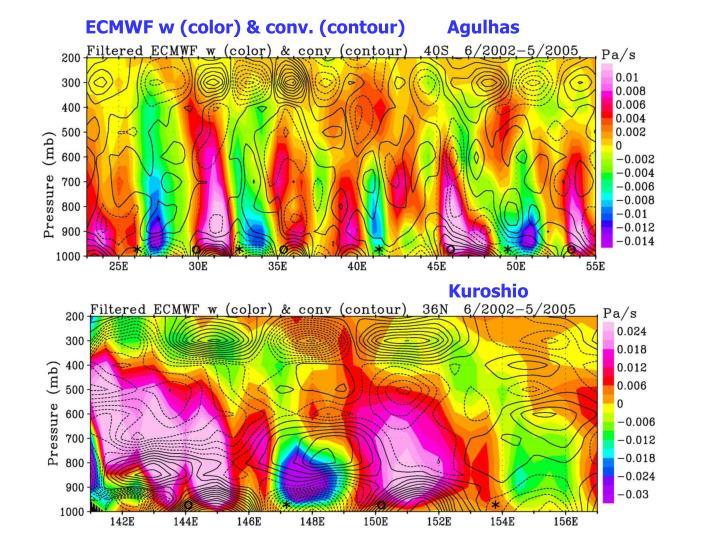 ECMWF w (color) & conv. (contour)        Agulhas