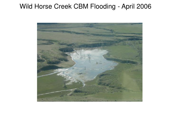 Wild Horse Creek CBM Flooding - April 2006