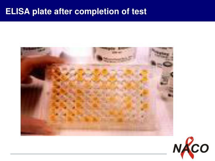 ELISA plate after completion of test