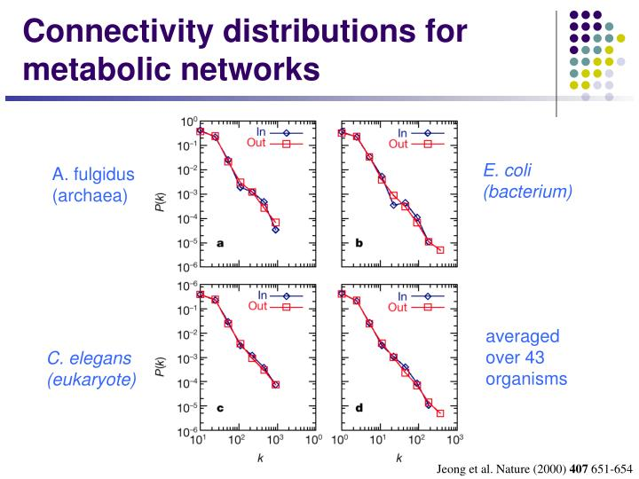 Connectivity distributions for metabolic networks