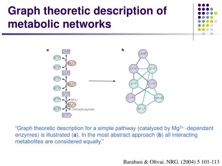 Graph theoretic description of metabolic networks