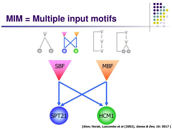 MIM = Multiple input motifs