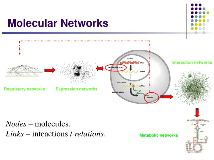 Interaction networks