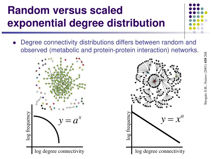 Random versus scaled exponential degree distribution