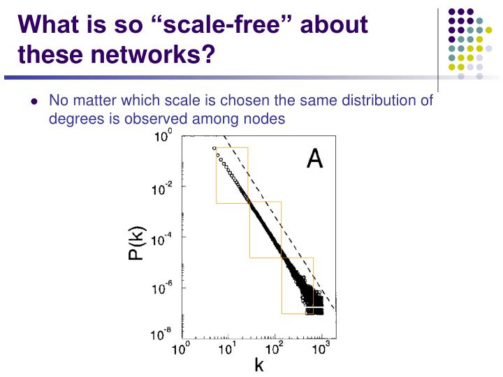 "What is so ""scale-free"" about these networks?"