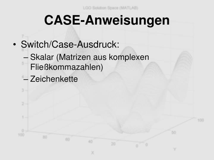 CASE-Anweisungen