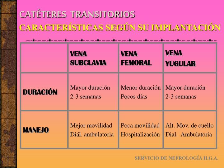CATÉTERES  TRANSITORIOS