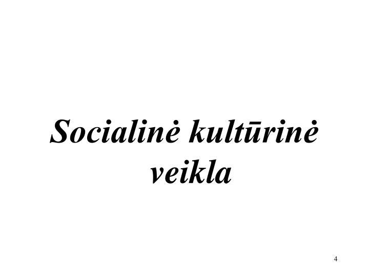 Socialinė kultūrinė
