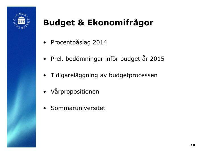 Budget & Ekonomifrågor