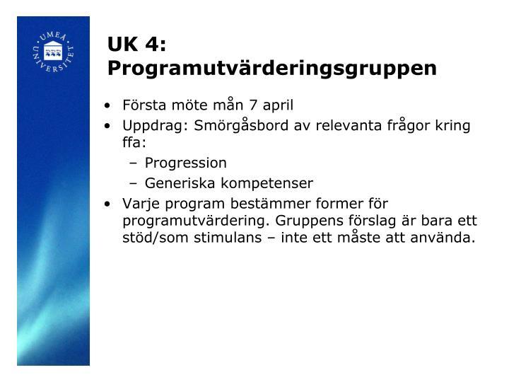 UK 4: Programutvärderingsgruppen