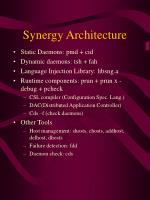 synergy architecture