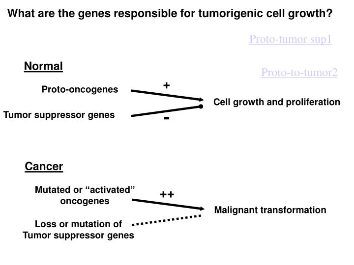 What are the genes responsible for tumorigenic cell growth?