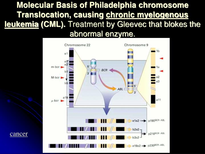Molecular Basis of Philadelphia chromosome