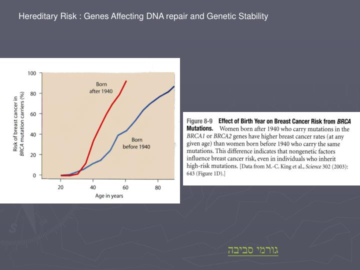 Hereditary Risk : Genes Affecting DNA repair and Genetic Stability