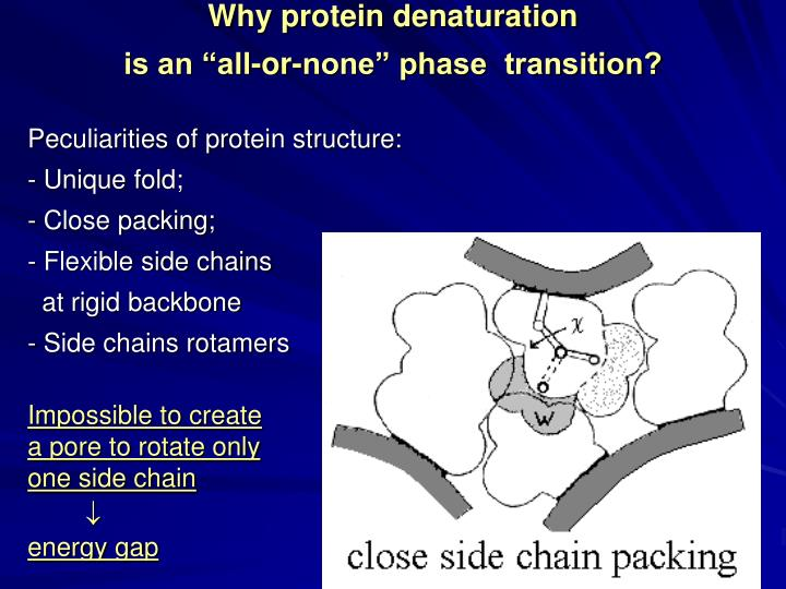 Why protein denaturation