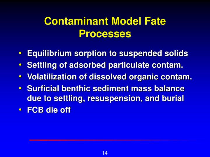 Contaminant Model Fate Processes