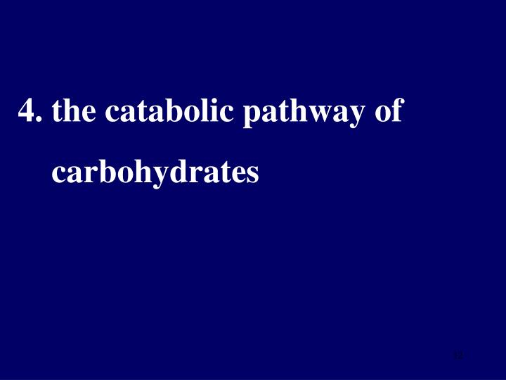 4. the catabolic pathway of