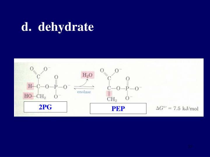 d.  dehydrate