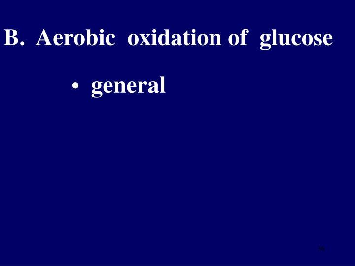 B.  Aerobic  oxidation of  glucose