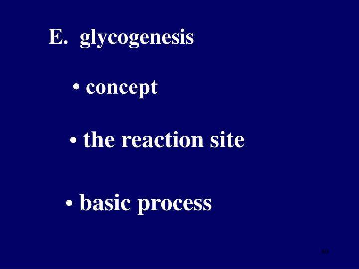 E.  glycogenesis