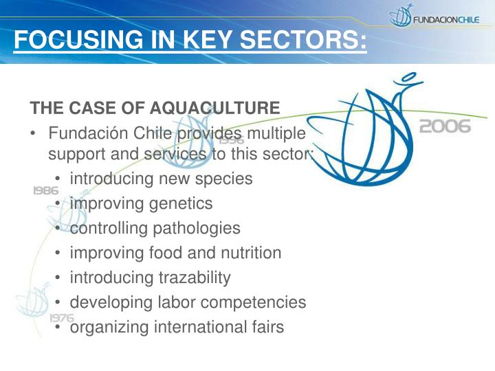 FOCUSING IN KEY SECTORS: