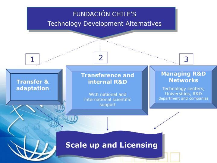 FUNDACIÓN CHILE'S
