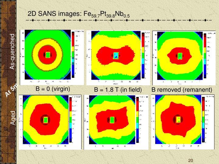 2D SANS images: Fe