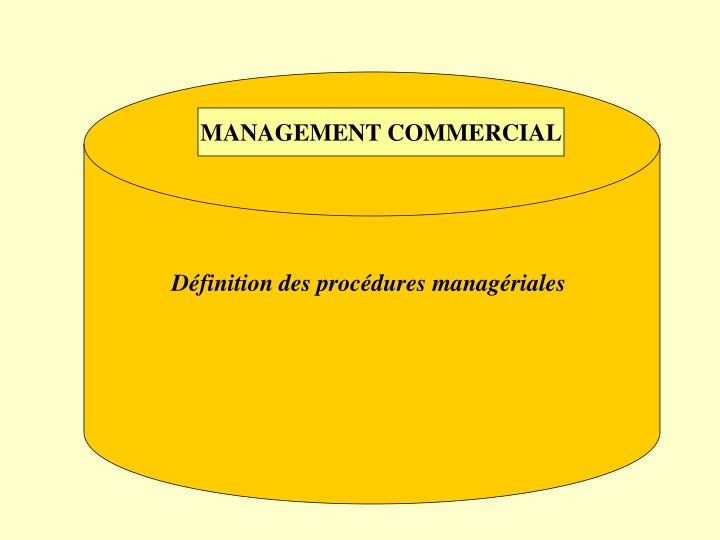 MANAGEMENT COMMERCIAL