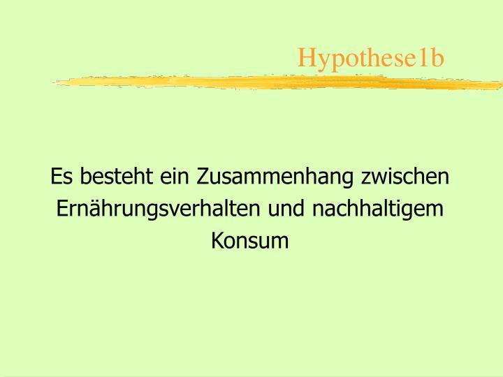Hypothese1b