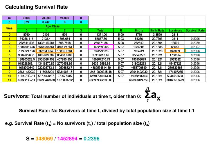Calculating Survival Rate