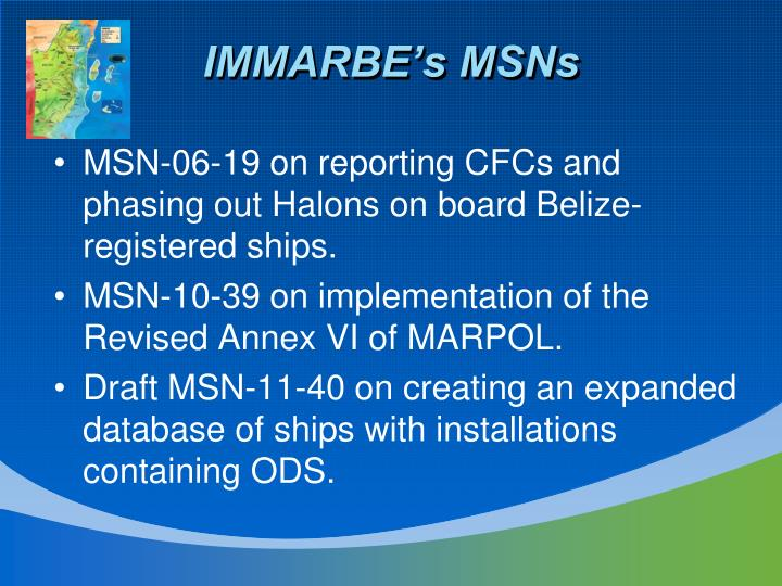 IMMARBE's MSNs
